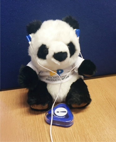 panda 5